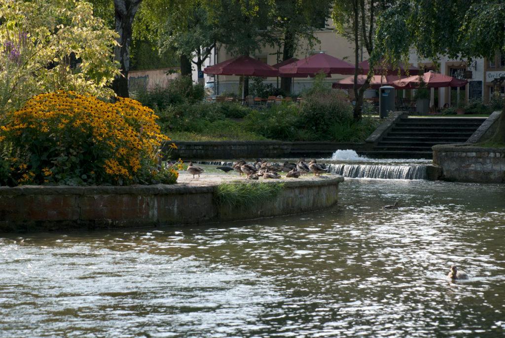 Paderborn Paderquellgebiet