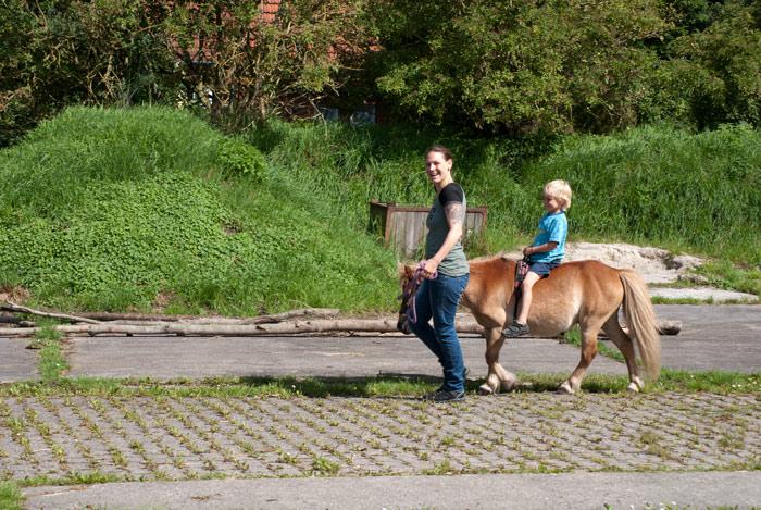 Bauernhof mit Nordsee Julianenhof Familienurlaub